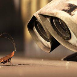 Валл-и и таракан