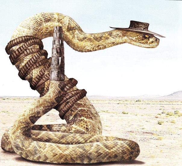 Джейк змея из Ранго