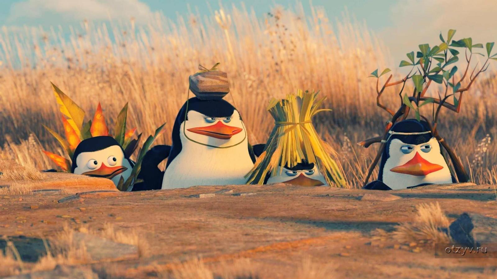 Пингвины из Мадагаскар