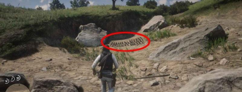 кости динозавров в Red Dead Redemption 8