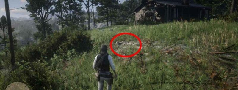 кости динозавров в Red Dead Redemption 10