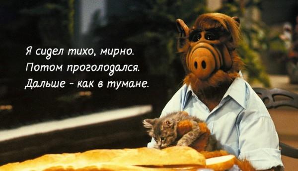 Цитаты Альфа из кино