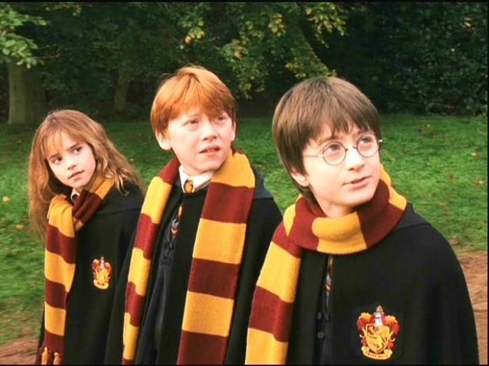Гермиона из Гарри Поттера