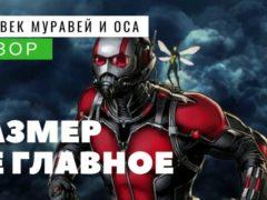 Обзор фильма «Человек муравей и Оса»