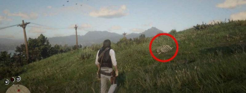 кости динозавров в Red Dead Redemption 2