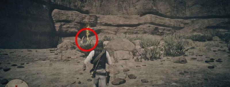 кости динозавров в Red Dead Redemption 35